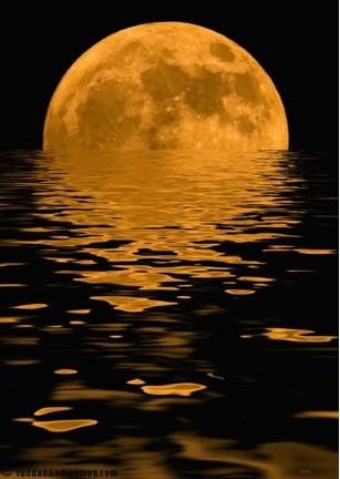 Full Moon Sailing Cruise