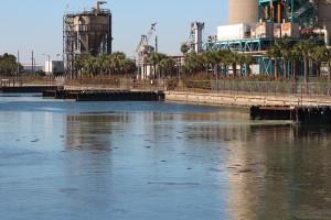 Manatee Canal